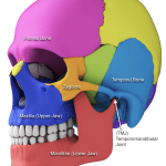 Complex Jaw Revision Surgery and Total Temporomandibular Joint (TMJ) Replacement