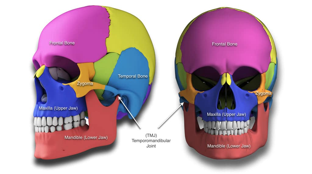 Craniofacial Surgery hemifacial microsomia, Treacher Collins syndrome Crouzon`s syndrome, Apert`s syndrome, cleft lip and palate deformities